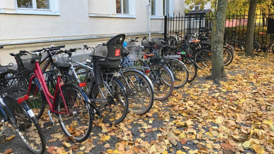 Parkerade cyklar bland höstlöv