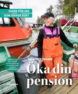 öka din pension_låg
