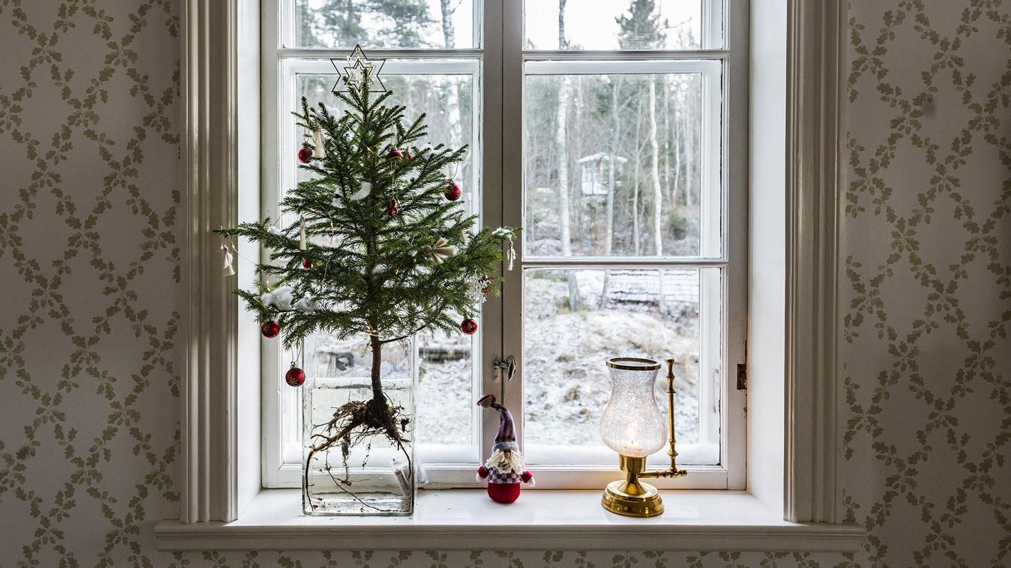 en fönsterkarm med en bordsgran i. Utsikt över ett vinterlandskap.